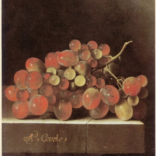 854px-Adriaen_Coorte_-_Grapes_on_a_Stone_Ledge_1705